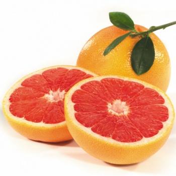 rubyredgrapfruitslice